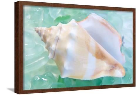 Crystal Cove #28-Alan Blaustein-Framed Art Print