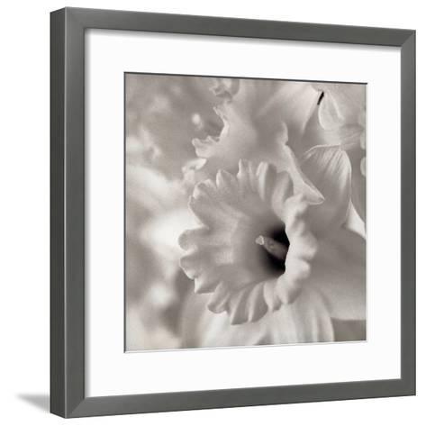Florison #45-Alan Blaustein-Framed Art Print
