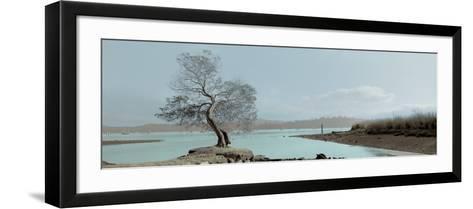 Lagoon Oak Tree-Alan Blaustein-Framed Art Print