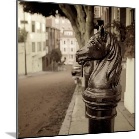 Hitching Post #7-Alan Blaustein-Mounted Photographic Print
