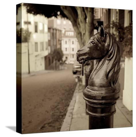 Hitching Post #7-Alan Blaustein-Stretched Canvas Print