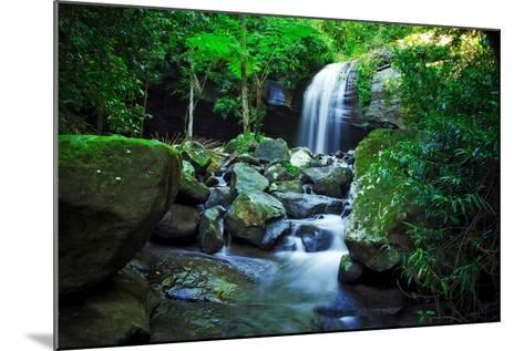 How?s the Serenity-Tracie Louise-Mounted Photographic Print