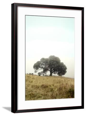 Oak Tree #52-Alan Blaustein-Framed Art Print