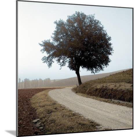 Tuscany #12-Alan Blaustein-Mounted Photographic Print