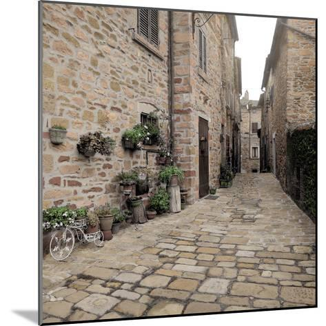 Tuscany #14-Alan Blaustein-Mounted Photographic Print