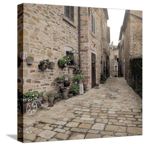 Tuscany #14-Alan Blaustein-Stretched Canvas Print