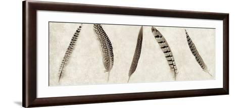 Feathers Panel #1-Alan Blaustein-Framed Art Print