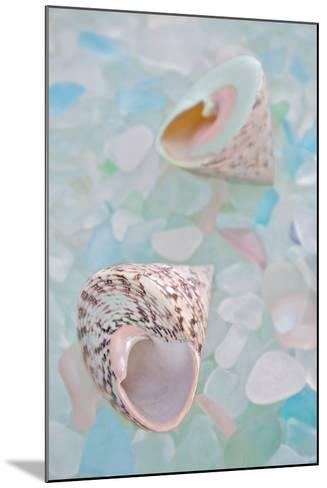 Crystal Harbor #5-Alan Blaustein-Mounted Photographic Print