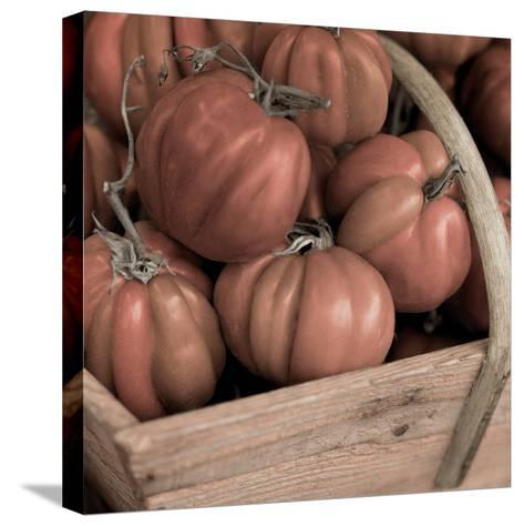 Marketplace #16-Alan Blaustein-Stretched Canvas Print