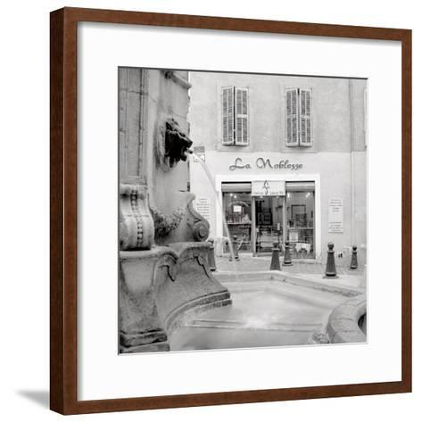 La Noblesse #2-Alan Blaustein-Framed Art Print