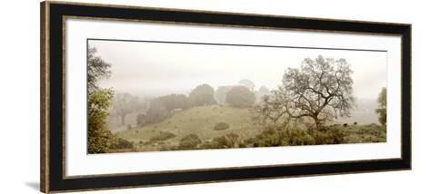 Pano Version 4-Alan Blaustein-Framed Art Print