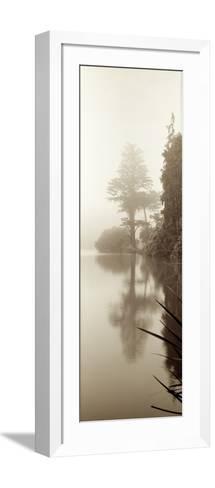 Lakeside Tree #2-Alan Blaustein-Framed Art Print