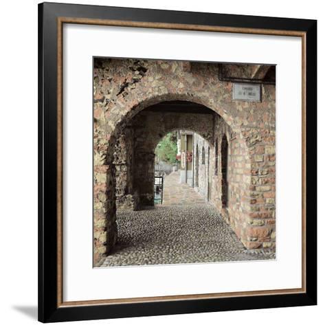 Lakeside Portal-Alan Blaustein-Framed Art Print
