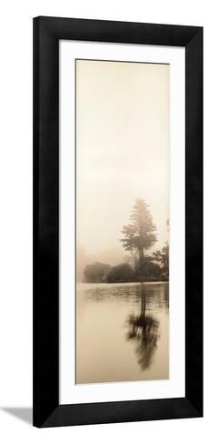 Lakeside Tree #1-Alan Blaustein-Framed Art Print