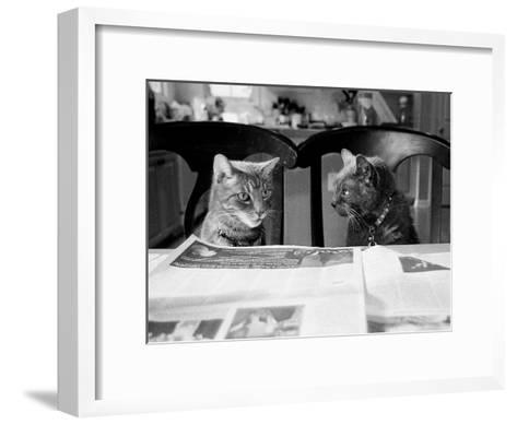 Not While I?m Reading-Kim Levin-Framed Art Print