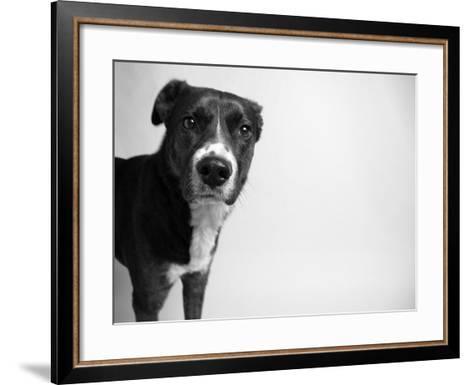 Reilly-Kim Levin-Framed Art Print