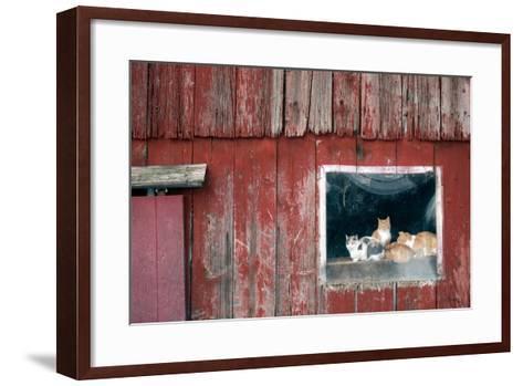 Family Portrait-Matthew Platz-Framed Art Print