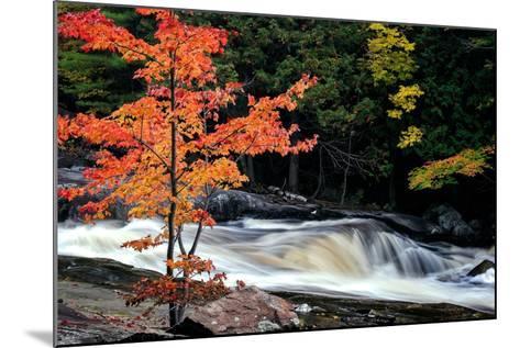 Autumn, Lower Rosseau Falls-David W^ Pollard-Mounted Photographic Print