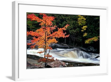Autumn, Lower Rosseau Falls-David W^ Pollard-Framed Art Print