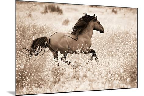 Running Free-Lisa Dearing-Mounted Photographic Print