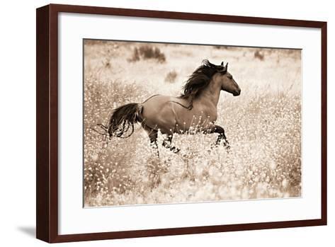 Running Free-Lisa Dearing-Framed Art Print