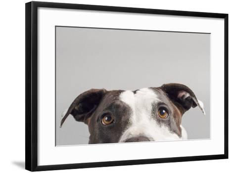 Ruby-Susan Sabo-Framed Art Print