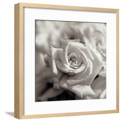 Florison #30-Alan Blaustein-Framed Art Print