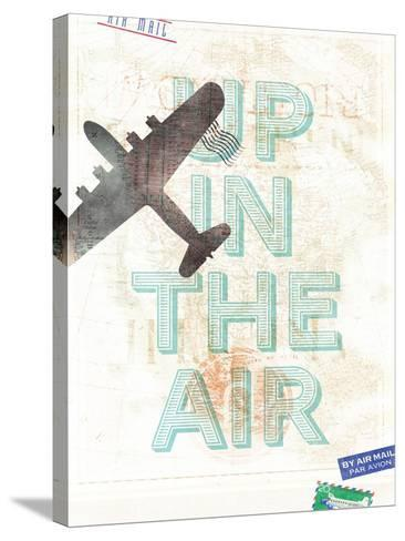 Up in the Air-Hannes Beer-Stretched Canvas Print