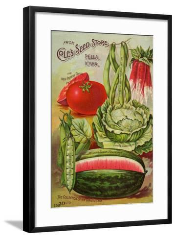 Six Varieties from Cole's Seed Store, Pella, Iowa--Framed Art Print