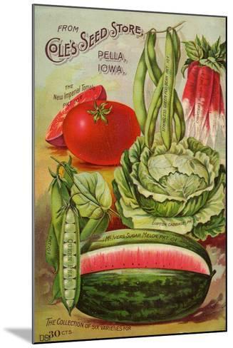 Six Varieties from Cole's Seed Store, Pella, Iowa--Mounted Art Print