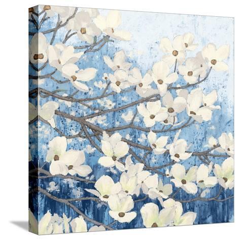 Dogwood Blossoms II Indigo-James Wiens-Stretched Canvas Print