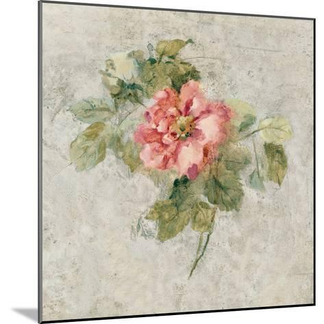 Provence Rose II Red and Neutral-Cheri Blum-Mounted Art Print