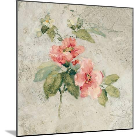 Provence Rose I Red and Neutral-Cheri Blum-Mounted Art Print