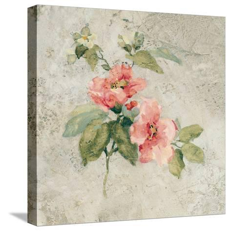 Provence Rose I Red and Neutral-Cheri Blum-Stretched Canvas Print