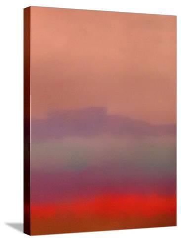 Purple Haze-Ruth Palmer-Stretched Canvas Print