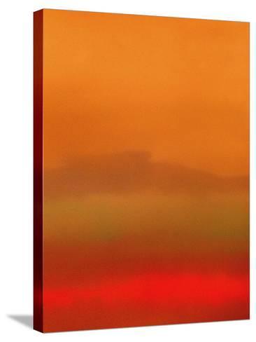 Orange Peel-Ruth Palmer-Stretched Canvas Print
