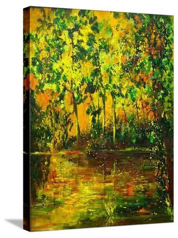 Pond-Pol Ledent-Stretched Canvas Print