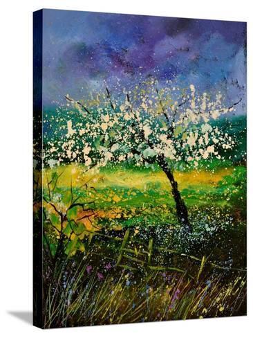 Spring 450150-Pol Ledent-Stretched Canvas Print