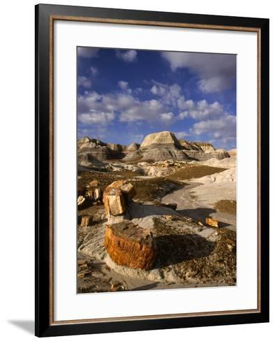 Petrified Forest II-Charles Bowman-Framed Art Print