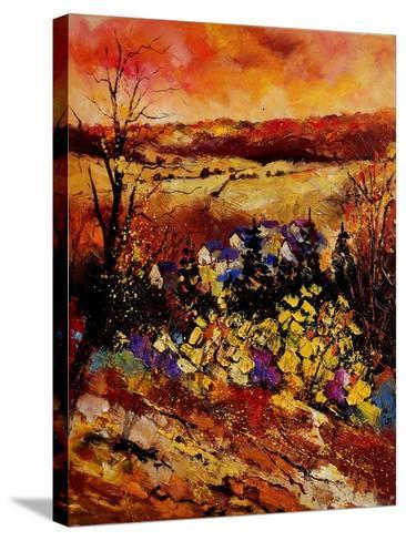 Manhay-Pol Ledent-Stretched Canvas Print