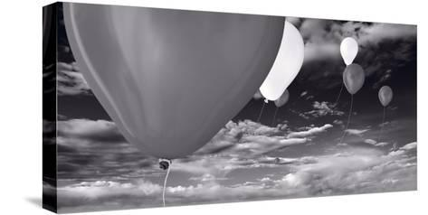 Balloon Launch BW-Steve Gadomski-Stretched Canvas Print