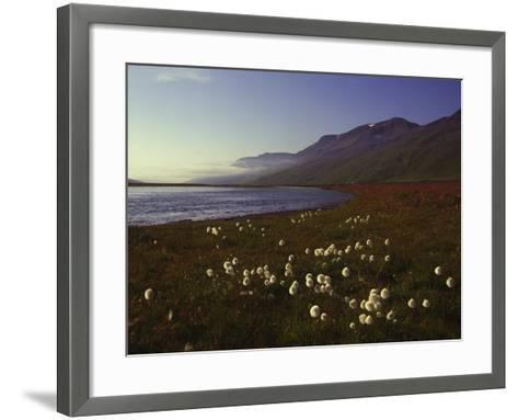 Iceland Landscape-Charles Bowman-Framed Art Print