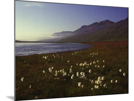 Iceland Landscape-Charles Bowman-Mounted Photographic Print