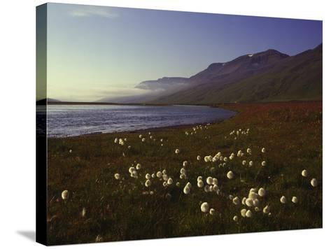 Iceland Landscape-Charles Bowman-Stretched Canvas Print