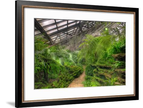 Garfield Park Conservatory Path Chicago-Steve Gadomski-Framed Art Print