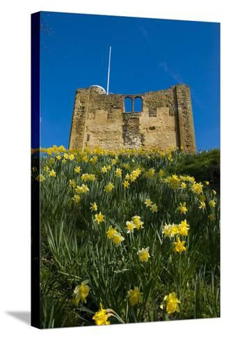 Guildford Spring-Charles Bowman-Stretched Canvas Print