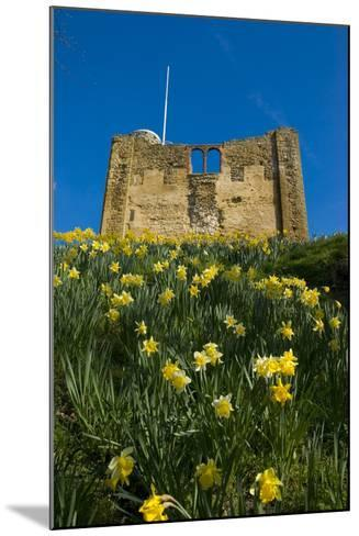Guildford Spring-Charles Bowman-Mounted Photographic Print
