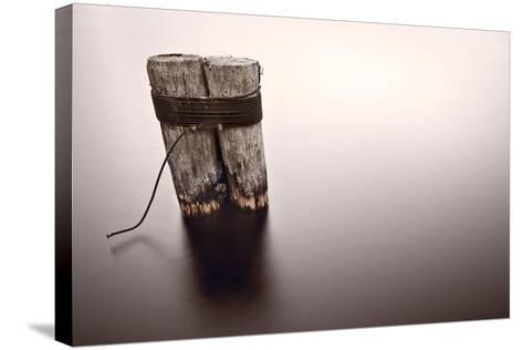 Wisconsin River Post Pile-Steve Gadomski-Stretched Canvas Print