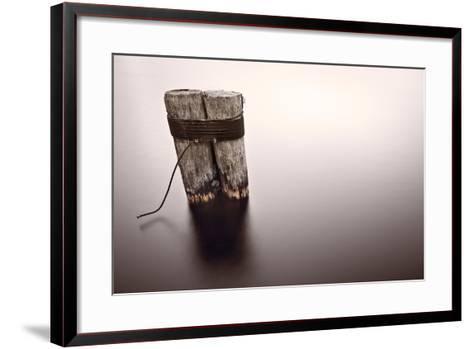 Wisconsin River Post Pile-Steve Gadomski-Framed Art Print