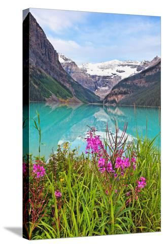 Fireweed at Lakeside, Lake Louise, Canada-George Oze-Stretched Canvas Print